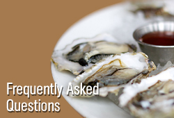 frequently asked questions about oysters