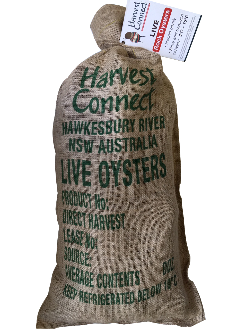 Live Rock Oysters – Full Sack
