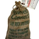Live Rock Oysters - Half Sack